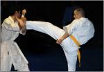 Highlight for Album: Karate