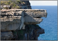 Highlight for Album: 2008-05 Royal National Park