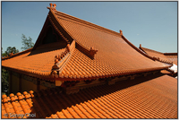 Highlight for Album: 2010-02 Nan Tien Temple
